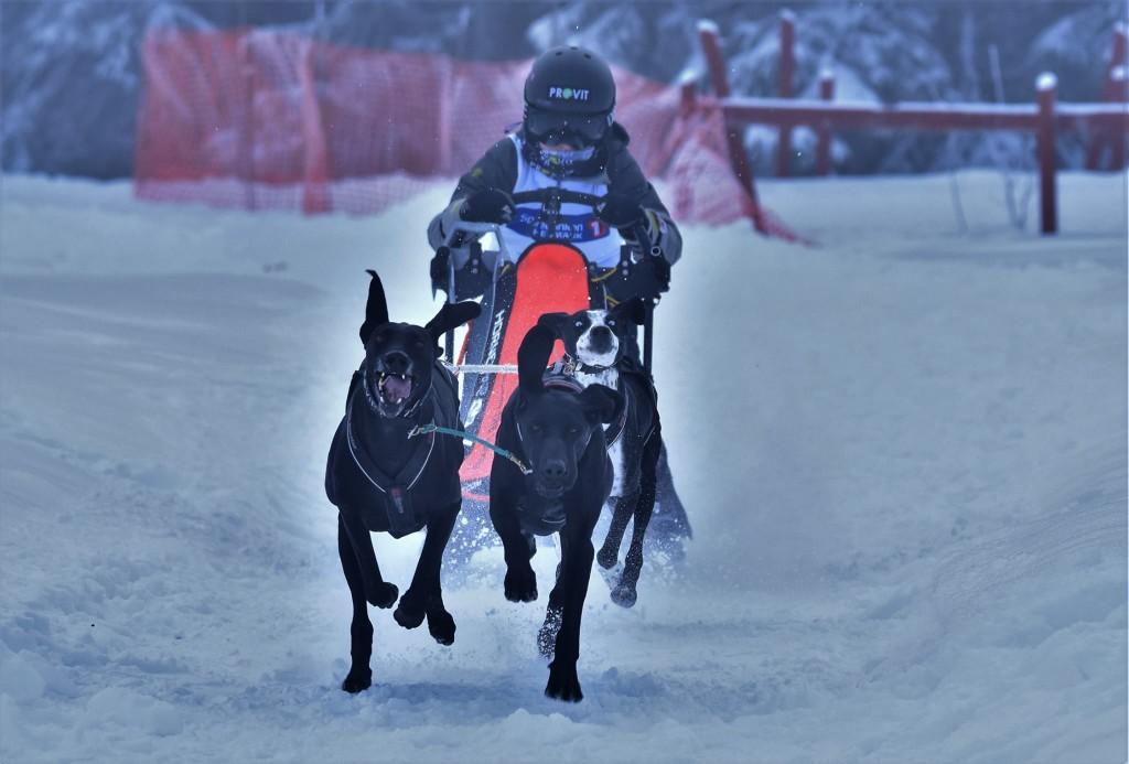 Andre Boysen Hillestad, Holmenkollen SK. Foto: Per Sverre Simonsen