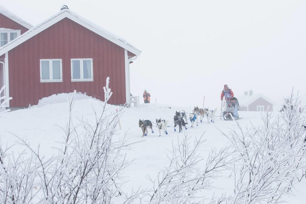 Marit Beate Kasin på vei ut sjekkpunkt Jotka. Foto: Steinar Vik - Finnmarksløpet