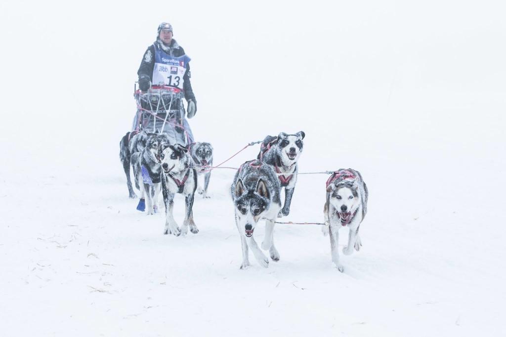 Petter Karlsson på vei mot Alta og seieren i FL-1000 2016 Foto: Steinar Vik - Finnmarksløpet