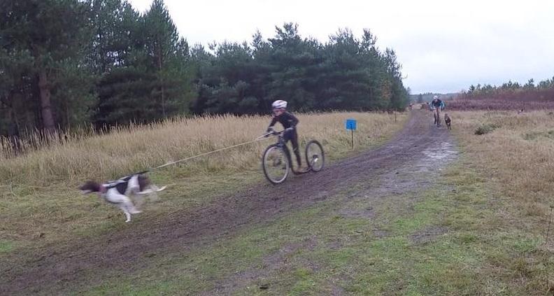 barmarks-em-2016-andre-boysen-hillestad-sparkesykkel